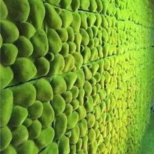 Grass Moss Mat Artificial Fake Garden Stone Plants Wall Balcony Decoration Lawn