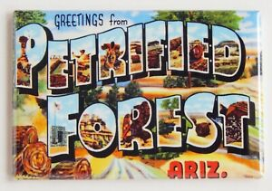 Greetings from Petrified Forest Arizona FRIDGE MAGNET travel souvenir