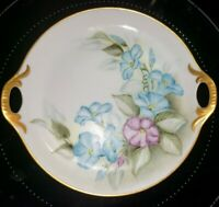 """Morning Glory 8"""" unmarked hand painted porcelain plate reticulated handles"""