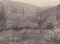 Günterstal bei Freiburg -  Schwarzwald -  um 1925 oder früher ?