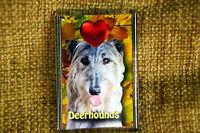 Deerhound Gift Dog Fridge Magnet 77x51mm Birthday Gift Xmas Stocking Filler