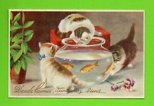 LATVIA LETTLAND CATS AND AQUARIUM WITH FISH happy Birthday VINTAGE POSTCARD 269