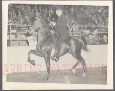 Vintage Photo Man Riding Horse in Show 764017