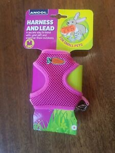Ancol Rabbit Pet Harness And Lead