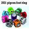 100Pcs 8mm Identify Ring Pigeon For Chicks Leg Foot Aluminium Mixed Color 2021