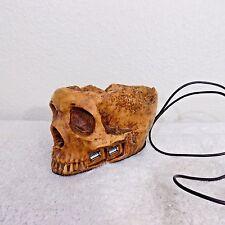 Princess International USB-5100 Skull USB Hub