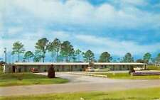 Neptune Florida Sand Piper Motel Street View Vintage Postcard K91134