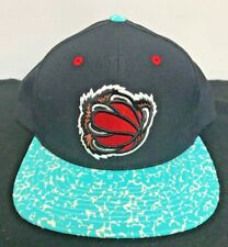 Mitchell And Ness Snapback Vancouver Grizlies Hat Rare