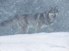 "Snowfall Wolf - Robert Bateman LTD Giclee Canvas size 12"" x 16"""