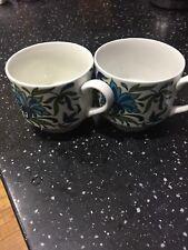 2x Midwinter Staffordshire SPANISH GARDEN By Jessie Tait TEA CUPS ONLY