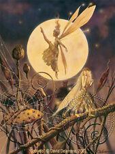 Cobweb Fairy Faery Art Print by David Delamare (R27)