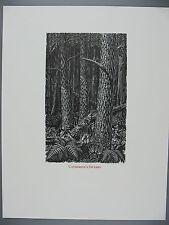 Original Wesley Bates Wood Engraving, Catherine's Swamps