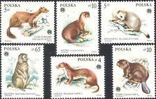 Poland 1984 Marmot/Beaver/Marten/Stoat/Fur/Animals/Nature/Clothes 6v set n44426