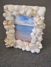 Beach Decor Seashell Picture Frame - Shell Frame - White Shells and Coral Frame