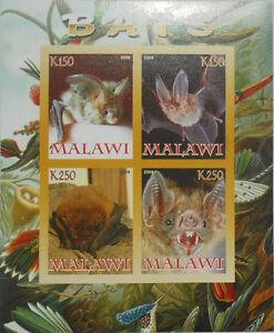 BATS  bat  wildlife m/s  Malawi 2008 MNH IMPERF #F305