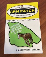 VTG I Horsed Around Mackinac Island Michigan Horse Riding Souvenir Badge Patch