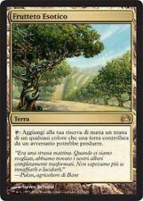 Orchard Exotic - Exotic Orchard MTG MAGIC Planechase Ita