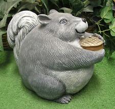 Chubby Fat Squirrel Animal Latex Fiberglass Production Mold Concrete Plaster