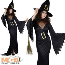 Black Long Witch Ladies Fancy Dress Halloween Womens Adult Witches Costume + Hat