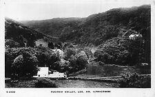 POSTCARD   DEVON    LEE   Fuchsia   Valley    RP