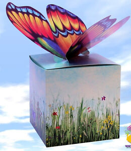 Butterfly Gift Box - No wrapping paper needed