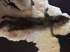"Vintage German Brown FOX Fur Pelt Stole - Full body collar rap head to tail  44"""