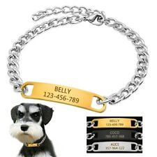 Chain Stainless steel Collar with Personalized Custom Engraved Pet Dog ID Tag
