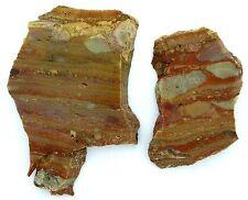 91.1 Gram Oregon Banded Owyhee Jasper Cab Cabochon Gemstone Slab Rough OJ16
