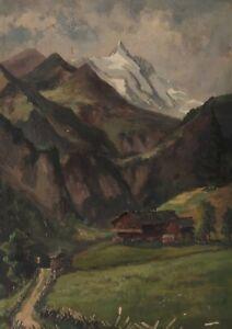 Alm Mountain Farm IN The Alps
