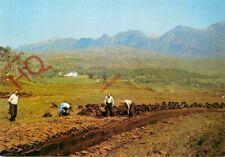 Picture Postcard__Sutherland, Peat-Workings Below Quinag
