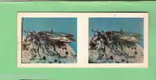 #D95.  LIPTON  TEA  6th   NATURE  SERIES  STEREO  CARD #2  SLENDER WAISTED WASP