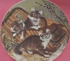 GONE FISHING: MAINE COONS CAT KITTEN PLATE AMY BRACKENBURY + CERT CAT TALES