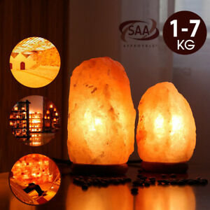 Himalayan Salt Lamp Natural Crystal Rock Shape Dimmer Switch Night Light 1-7 kg