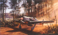 NIC trudgian Fw190 Luftwaffe impresión Timber Wolf firmada por el veterano de 2 pilotos de Ace