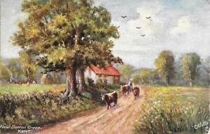 Near Dunton Green, Kent - Vintage - Unposted Postcard