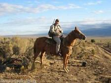 Wyoming Hunting Trips & Leases