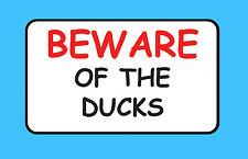 Cuidado con el pato mascota de Aves Pegatina de explotación ganadera signo de vinilo Impermeable B46