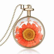 Amazing gold & Orange Séchée tournesol rond collier pendentif bouteille de parfum n386
