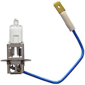Fog Light Bulb Front|WAGNER Lighting BP1235/H3 - 12,000 Mile Warranty