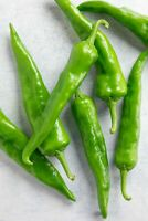 Hatch Sandia Chili Pepper Seeds, NuMex, Hot Green Chile, Ristra, FREE SHIPPING