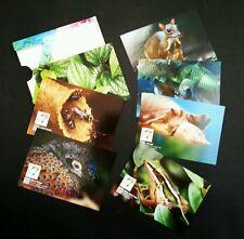 Malaysia 7 Wonders Of Flora & Fauna 2016 Bee Pheasant Fish (postcard) MNH *Fresh
