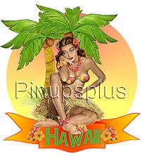 Sexy Pinup Girl Waterslide Decal Sticker Palm Tree Grass Skirt Hawaiian TIKI S1
