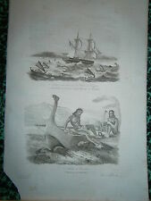 gravure 1839 Iles Carolines Dumont d'Urville Habitants et navire  Tamatam