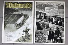 20393 FILM PLAKAT POSTER Waldrauch 1939 Hedwig Bleibtreu Hansi Knoteck P.Richter
