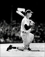 Ted Williams #10 Photo 8X10 - 1950 Red Sox  - Buy Any 2 Get 1 FREE