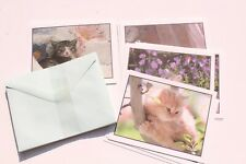 Vintage Boxed Kitten Blank Note Cards & Envelopes Cute Cat Lover Stationery