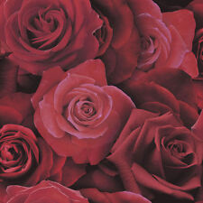 Arthouse Austin Rose Red Wallpaper Print Photographic Flower Floral Bold 675600