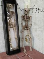 "Halloween Creepy Aged Skeleton 15"" Prop Party Decor"