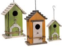 En Bois Nidification Nid Boite Maison Oiseau Petit Sauvage Mésange Bleue Robin