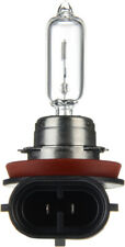 Headlight Bulb-S Philips H9C1